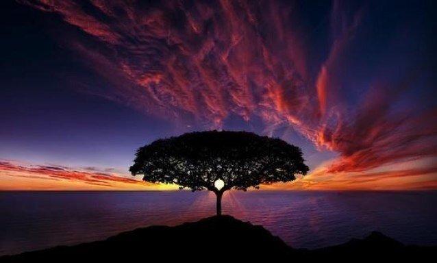 Resultado de imagen para earth amazing