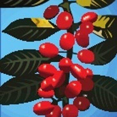The Ethiopian Coffee Co