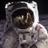 Apollo 11 Space Junk twitter profile