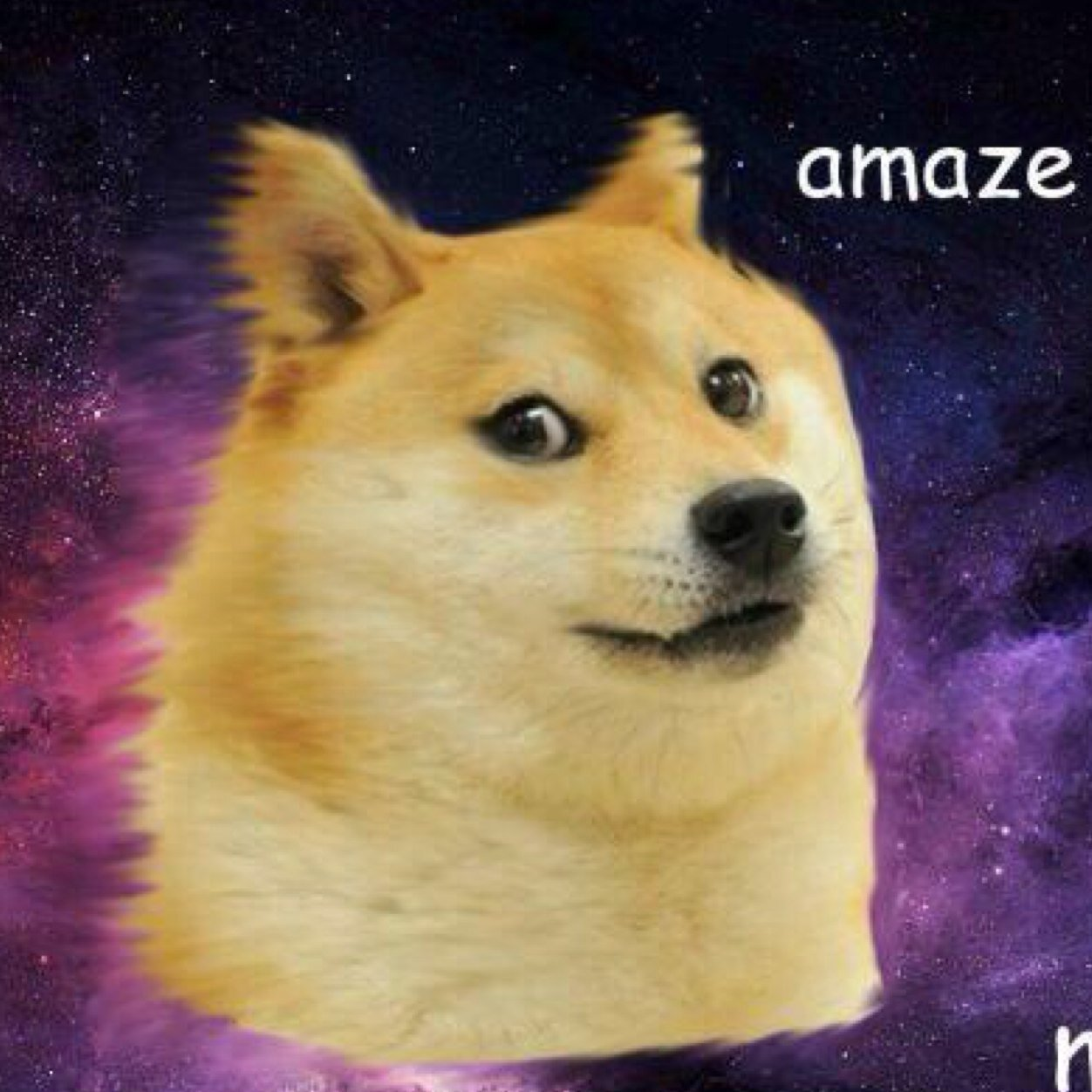 Wow much doctor ho dogetorwho twitter