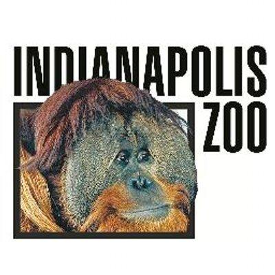 Indianapolis Z🎃🎃 (@IndianapolisZoo) Twitter profile photo