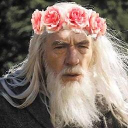 GANDALF THE GAY