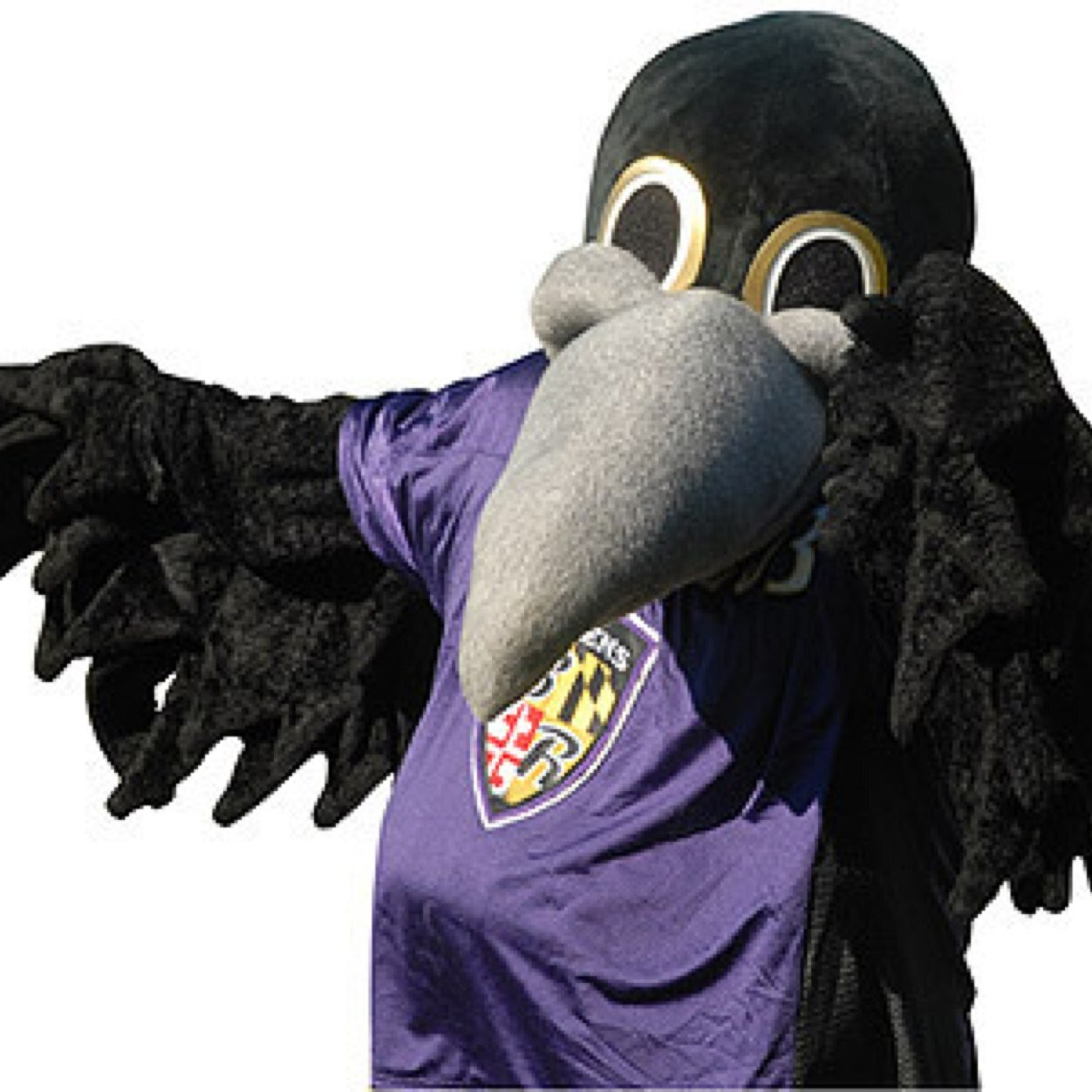 What is the baltimore ravens mascot name - Ravens Poe