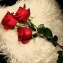 ROO7 AL7B (@0553233223) Twitter