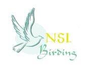 NSL-Birding