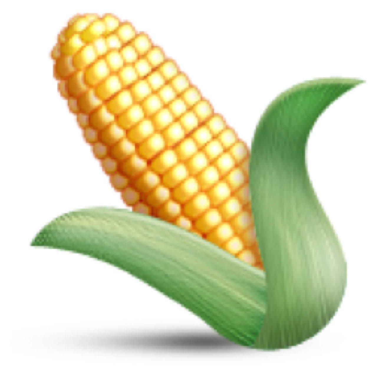 corn emoji   thecornemoji  twitter Fruit and Vegetable Border Clip Art Basket of Fruits and Vegetables