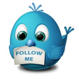 Wii Follow U