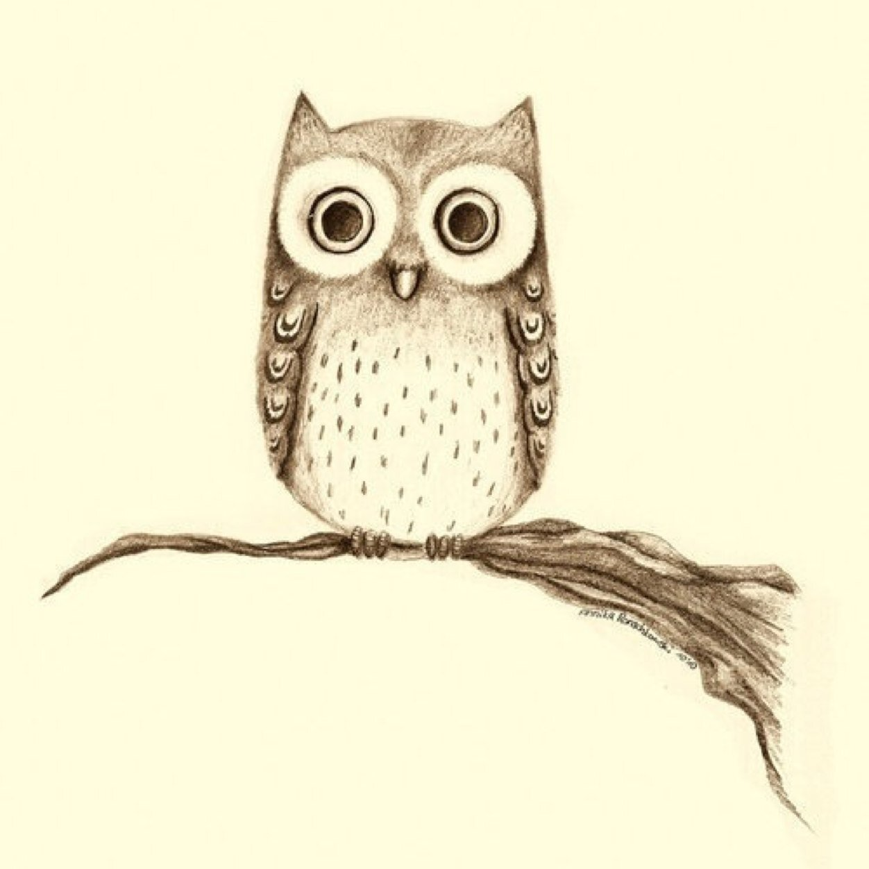 cute owl drawings - 736×931
