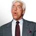 Ric Flair (not Ric Flair)