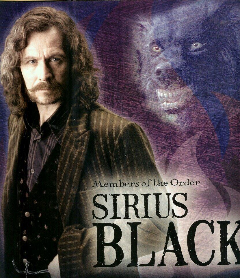 Sirius'Padfoot'Black (@BlacksdenSirius) | Twitter