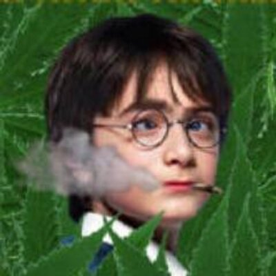 Harry Pothead ϟ Sorcerersstoned Twitter