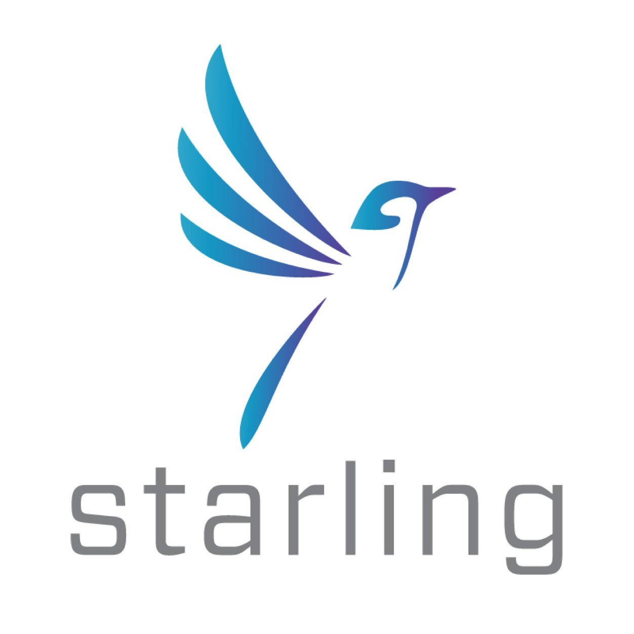 Image result for starling trust