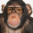Terry Richardson - Terry_World