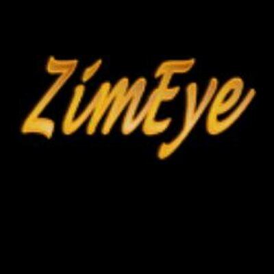 ZimEye periscope profile
