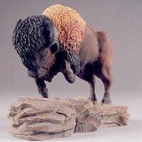 buffalocharging