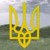 Террористы похитили в Славянске активистку Ирму Крат - Цензор.НЕТ 450