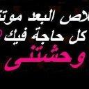 seifelden (@01229348772) Twitter