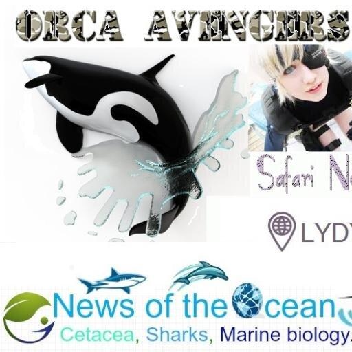 @OrcaAvengers