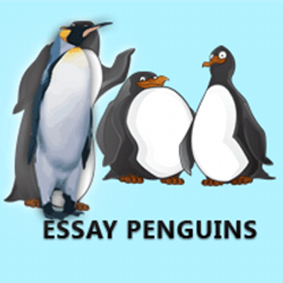 essay penguins essaypenguins twitter essay penguins