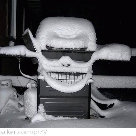 Snowmageddoncatlypse