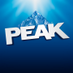 Twitter Profile image of @peakauto