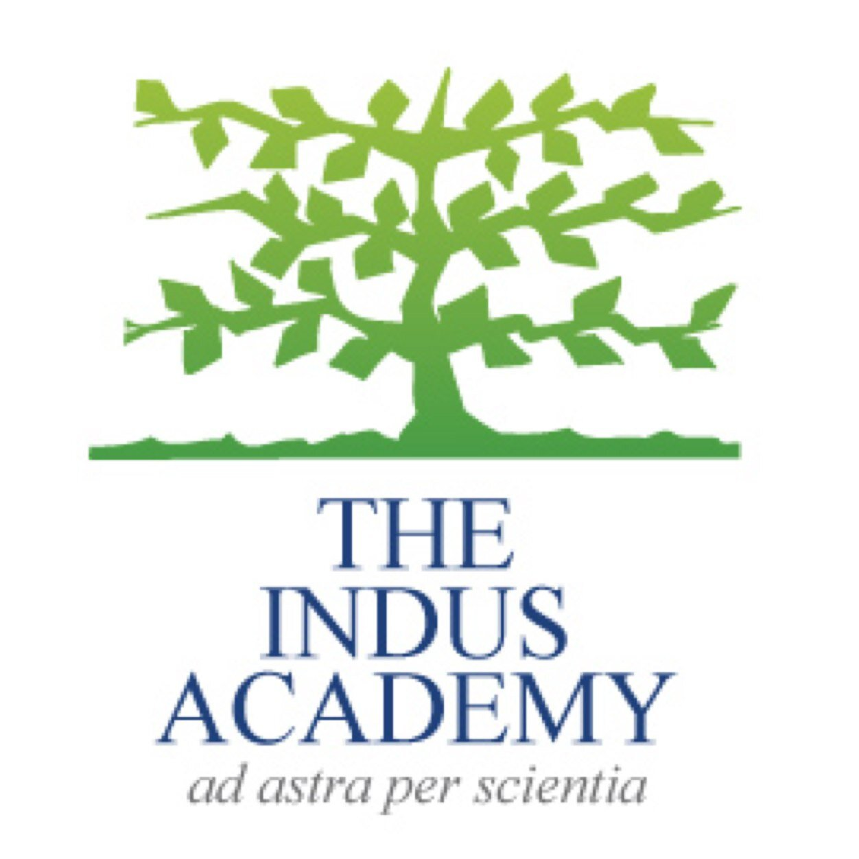 The Indus Academy