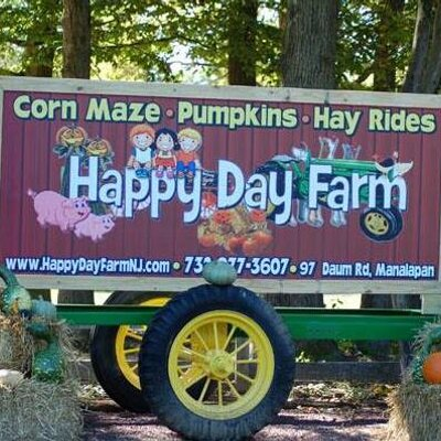 Image result for happy day farms
