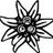 edelweispiraten