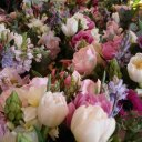 Florist Full Service (@1964Polcaro) Twitter
