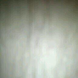 nordavento avatar