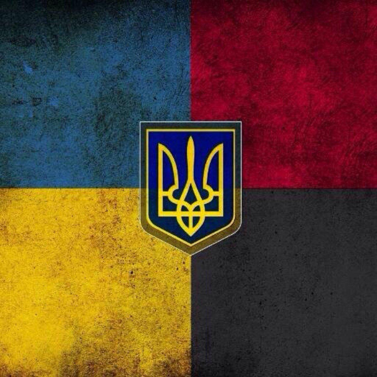 свое флаг украины картинки на аватарку эпифитные живет, паразитируя