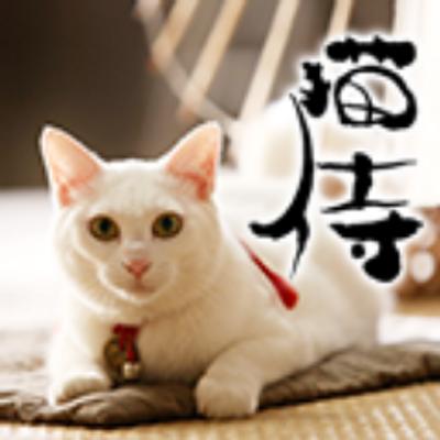 護国侍(猫侍モード)