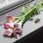 @bouquet_yui
