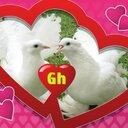 Hosnialmorshdy (@01095353064) Twitter