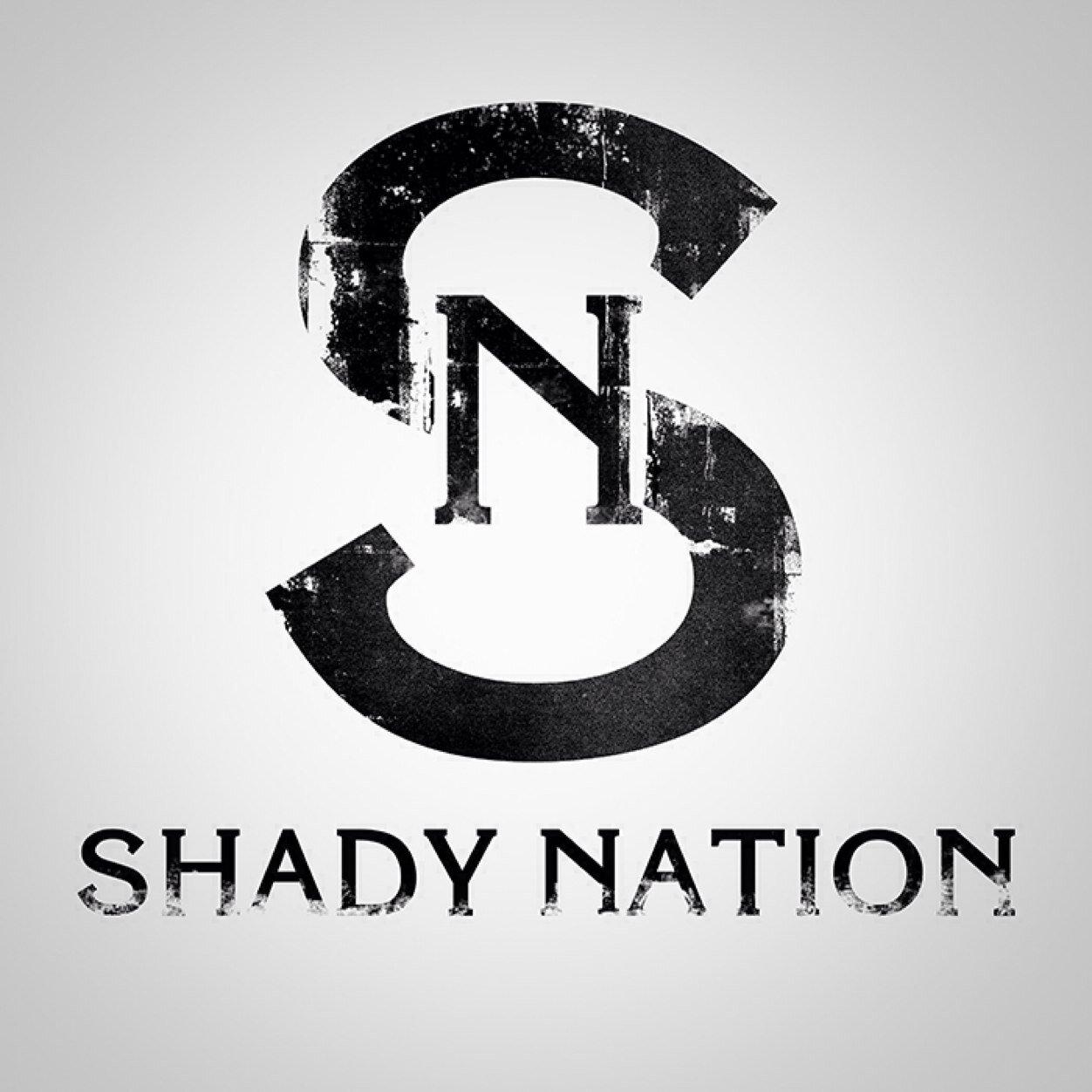 shady nation teamshadynation twitter