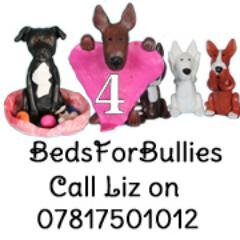 Bedsforbullies