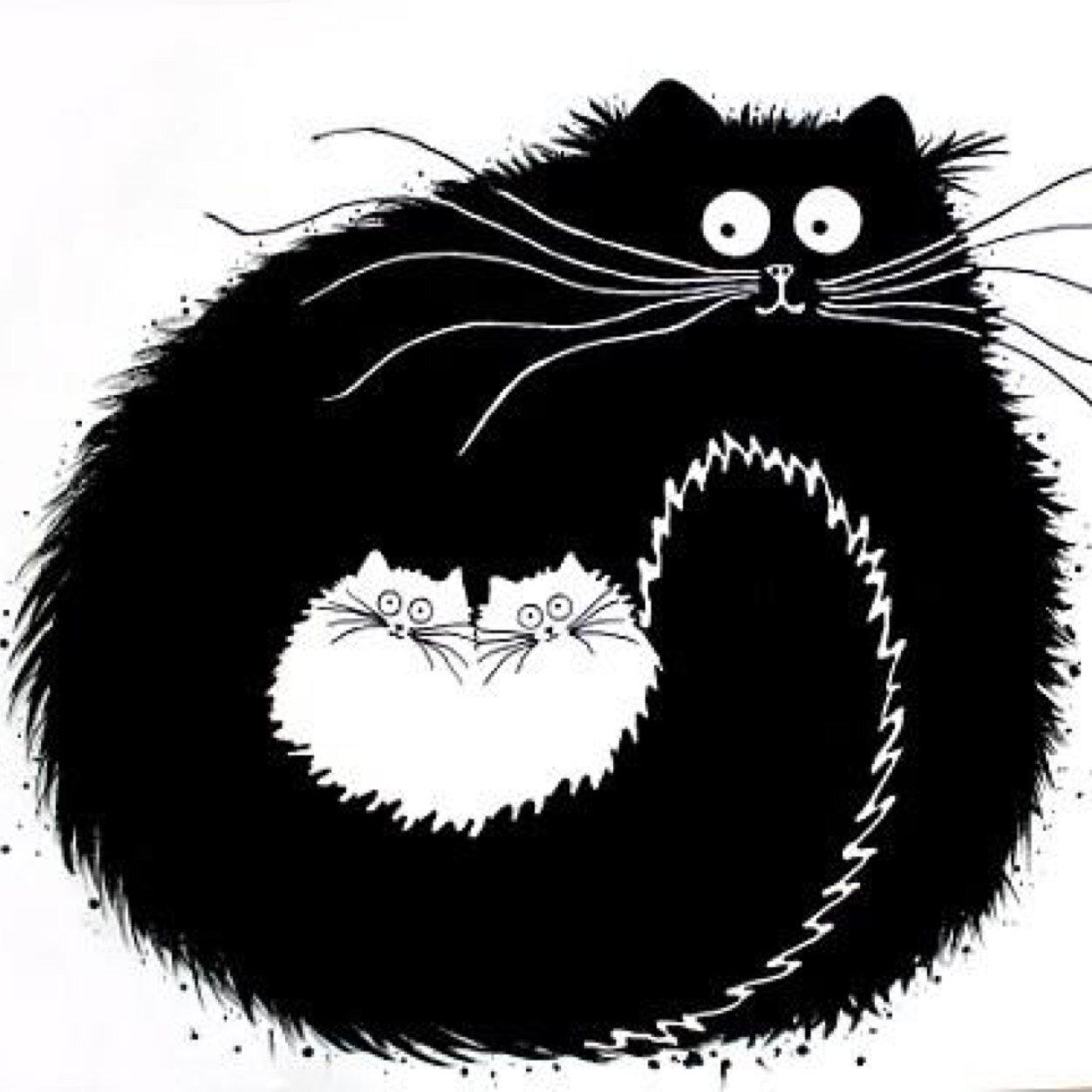 Черно-белые рисунки кота смешные, нижегородские открытки картинки