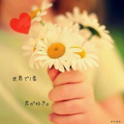好きだよ (@loveforyou_7)   Twi...