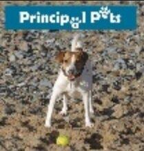 PrincipalPets