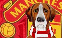 Manchester Utd FNH