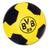 Dortmund Insider's Twitter avatar