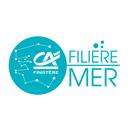 Photo of FILIEREMERCA29's Twitter profile avatar