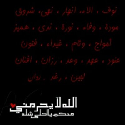 ___4MyFriends Twitter Profile Image