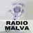 Radioflautas