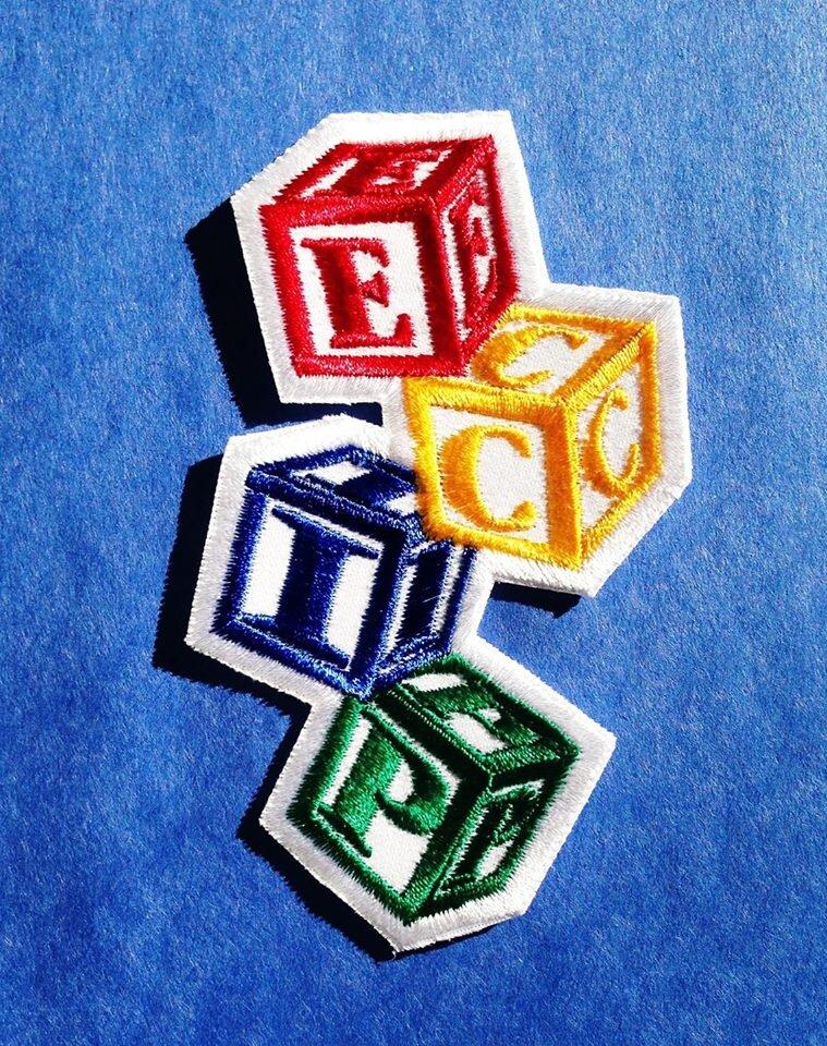 Image result for ECIP regina logo