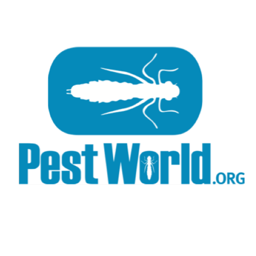 Image result for pestworld