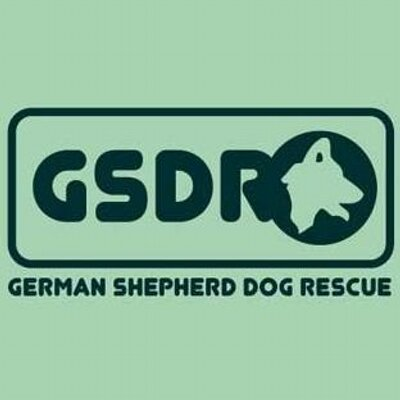 GSDR Official Page
