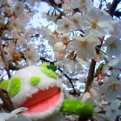 itiyukiさん