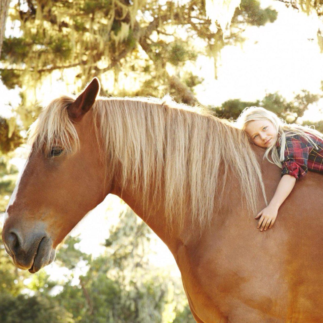 Horse Girl Problems Horse Girl Problems