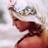 Miss Turner - Assasin_Candy